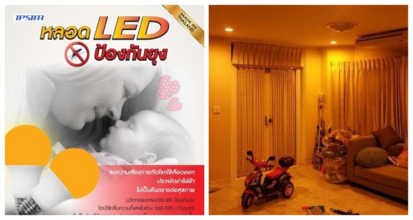 นวัตกรรมใหม่ … หลอดไฟ LED สำหรับ ป้องกันยุง ลดความเสี่ยงการเป็นโรคไข้เลือดออก